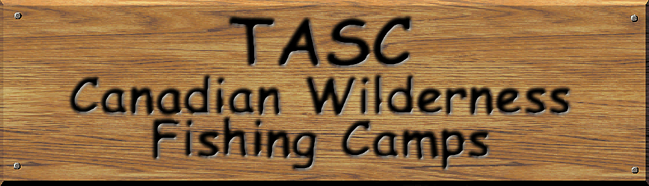 TASC for Teens